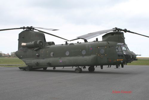 chinook-Alain--2--copie.jpg