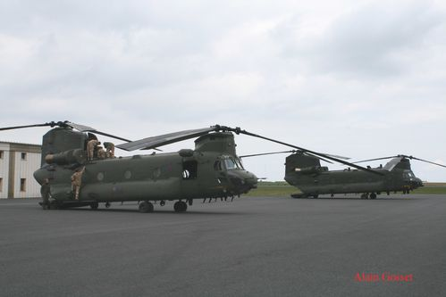 chinook-Alain--4--copie.jpg