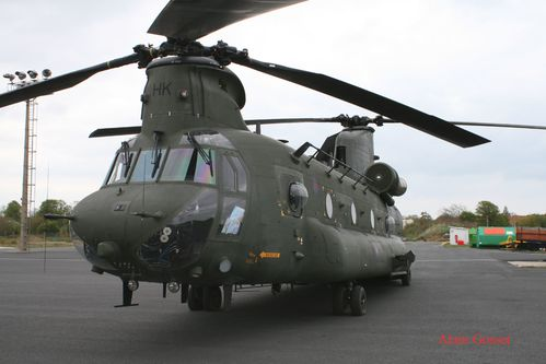 chinook-Alain--7--copie.jpg