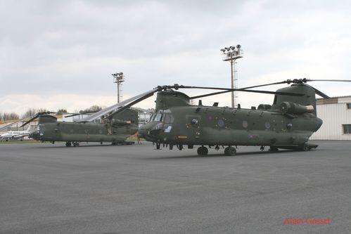 chinook-Alain--9--copie.jpg