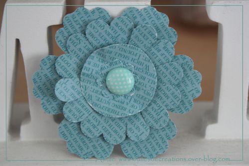 fleurs-3640.JPG