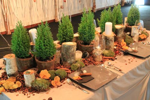 Passeur de plantes - Decoration de table nature ...