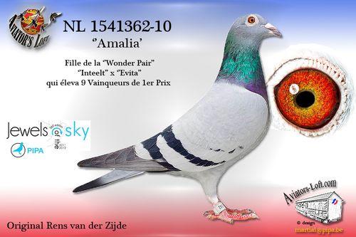 Amalia-362.jpg