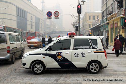 Harbin 5233