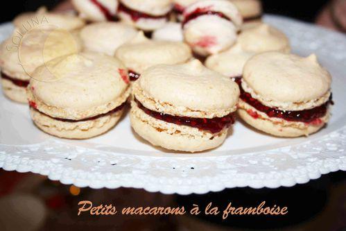 Macarons-framboise--2-.JPG