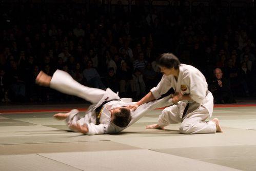 NAMT07 0027 Shukokai Karate