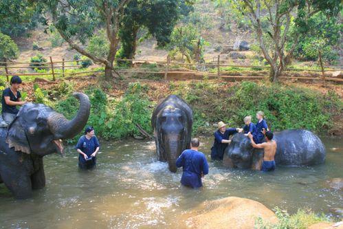 Thaïlande 0897