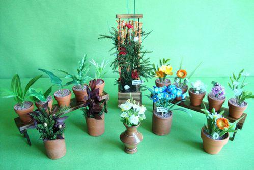 14 Plantes en pot