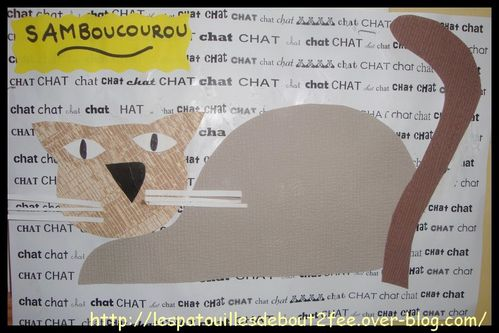 chat-couche6.jpg