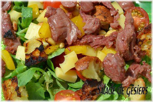 salade gesiers 1