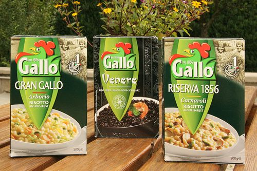 riz-gallo-w.jpg