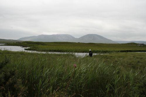 Irlande-226.jpg