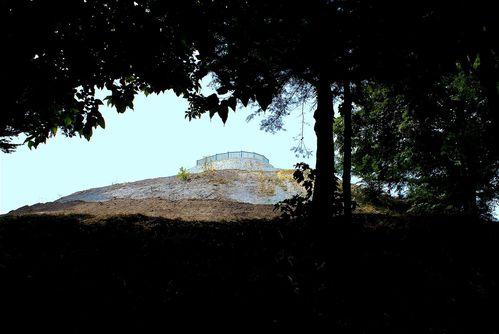 Mont Esprit sous bois