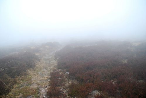 B06 - en plein brouillard [1280x768]