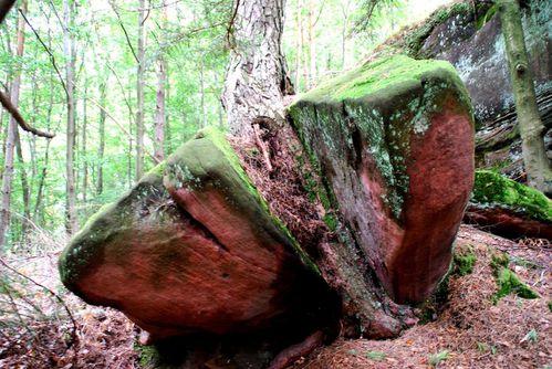 I05 - Dambach - rocher de l'homme et de la femme [1280x768]