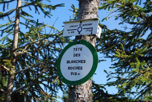 F11 - Praye - hautes chaumes - blanche roches - bipierre [1