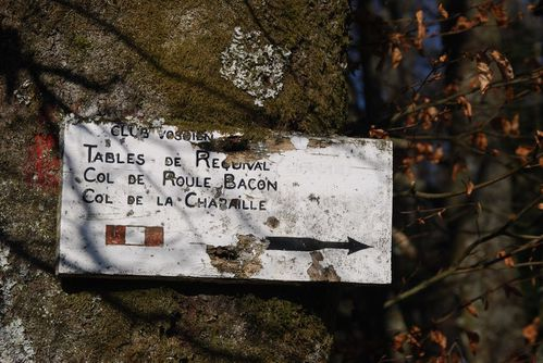 H02 - Chaume Requival - Roule bacon - Charaille004