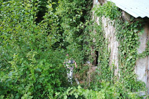 Lavoir St -Thomas en Argonne 7 2011