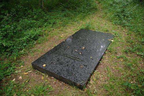 pierre-3-copie-1.jpg