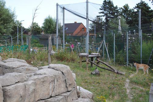 zoo-068.jpg
