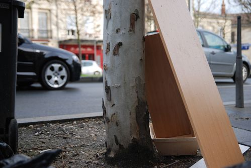 avenue-thiers--bordeaux---copie-copie-2.JPG