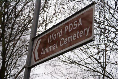 The Ilford Animal Cemetery. Quella dei cimiteri per gli animali domestici: un'usanza che in Italia stenta ad attecchire