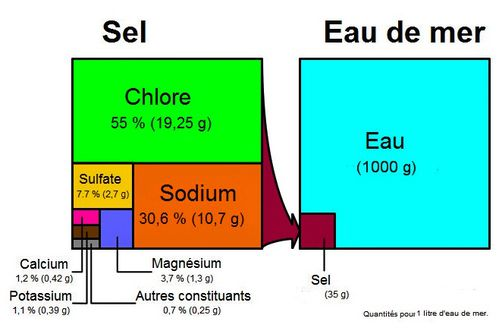 sel-marais-salants-2-copie-1.jpg
