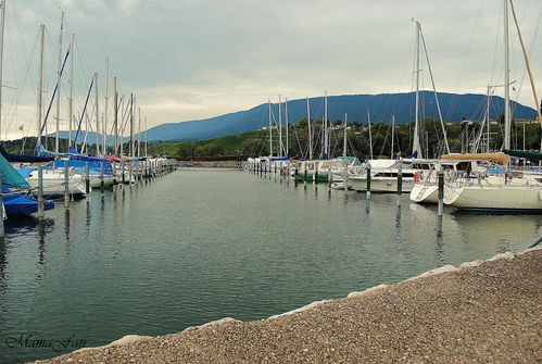 Lac Neuchatel-copie-1