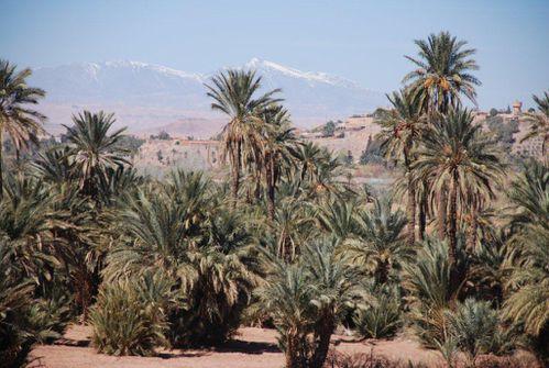03-Maroc-12 6934