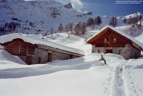 Chalet-sous-la-neige