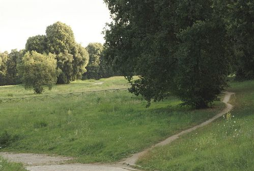 Il Parco del Bosco di Capodimonte colpisce ancora. Dopo la morte accidente di un runner ventenne nel 2011, si registra una nuova morte, stavolta per presumibile arresto cardio-circolatorio