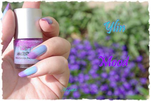 Ylin-Mood-1.jpg