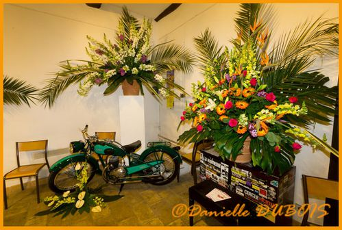 Expo Fleurs Cagnes Avril 2011-132