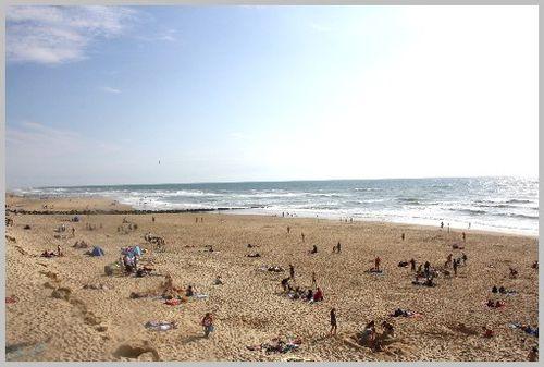 Ocean-2011 5525