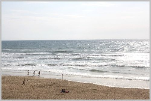 Ocean-2011 5531