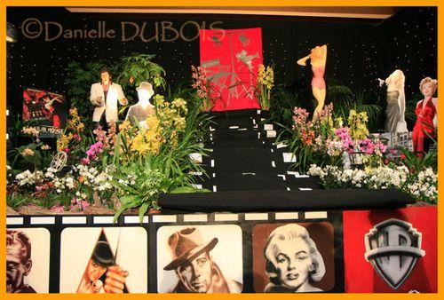 Orchidées Menton 2010 07