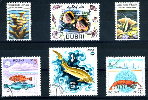 TIMBRES-POISSONS-01.JPG