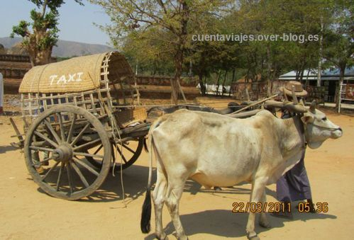 A Myanmar (Ava, Mingun)7