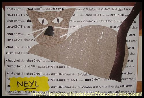 chat-couche3.jpg