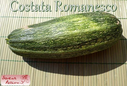 costata_romanesco.jpg