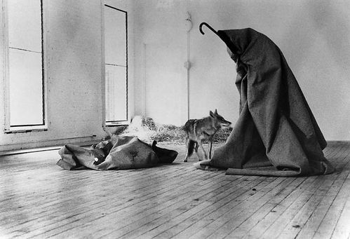 beuys coyote-i-likeamerica-and americalikeme 1974