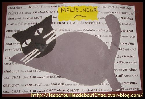 chat-couche-1.jpg