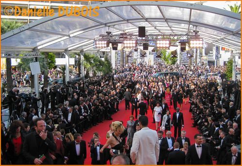 Festival Cannes 2012 24-2
