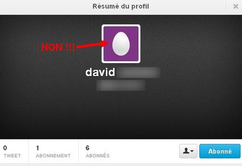 twitter anonyme