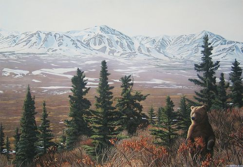 Denali-Spring.jpg