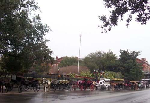 New Orleans carriages