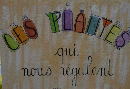 3-b-ces-plantes-qui-nous-regalent-titre-Paulette--1-.jpg