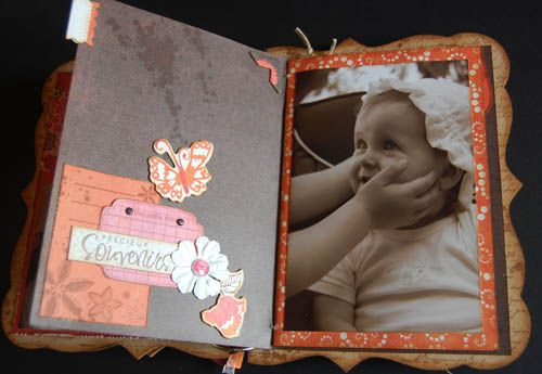 mini-album-kit-fee-du-scrap-juin-2010 3917 500 pixels