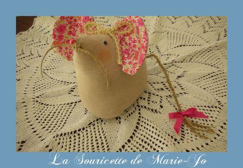 la-souris-de-Marie-Jo.jpg