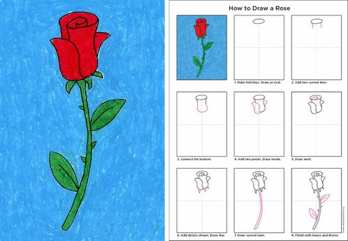 How-To-Rose-Diagram.jpg
